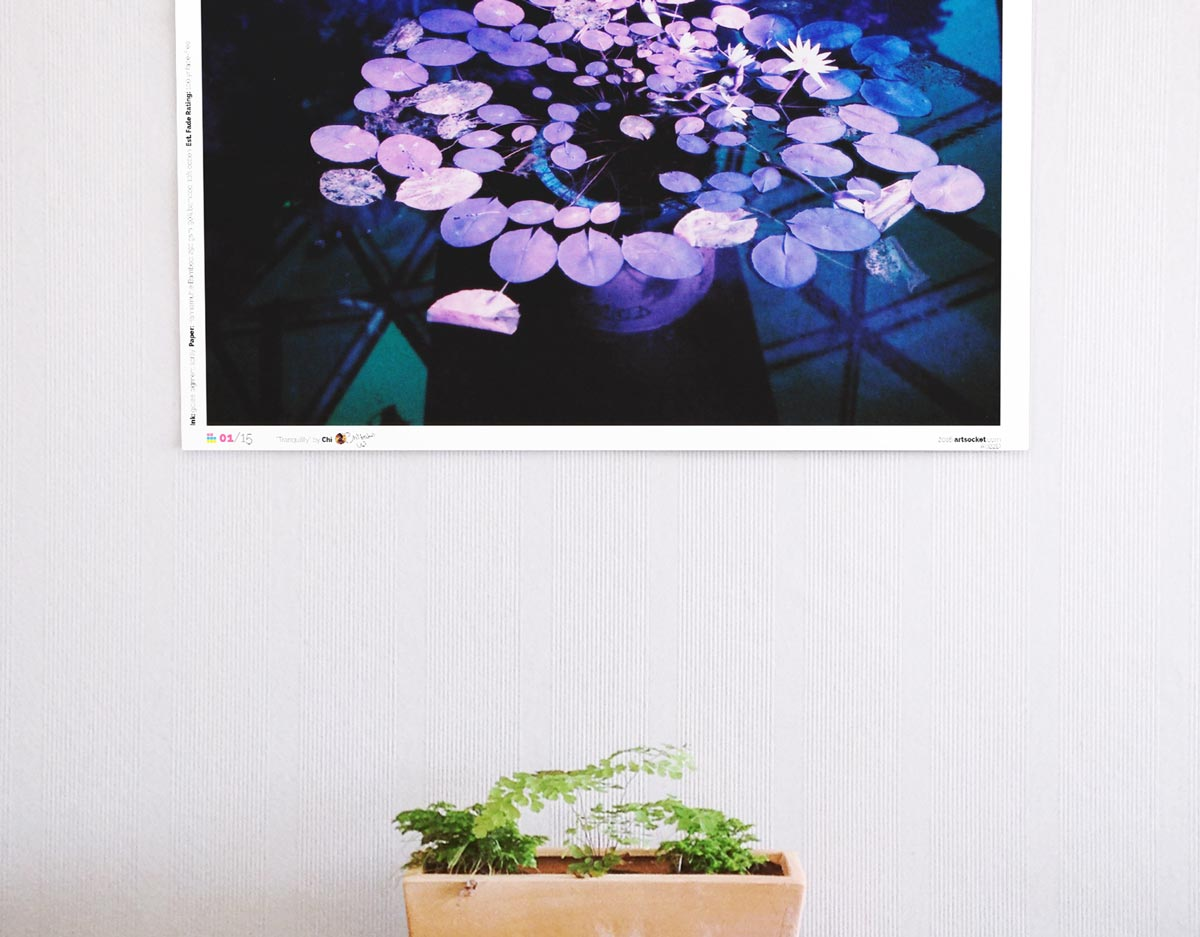 Film photo print hanging on a wall