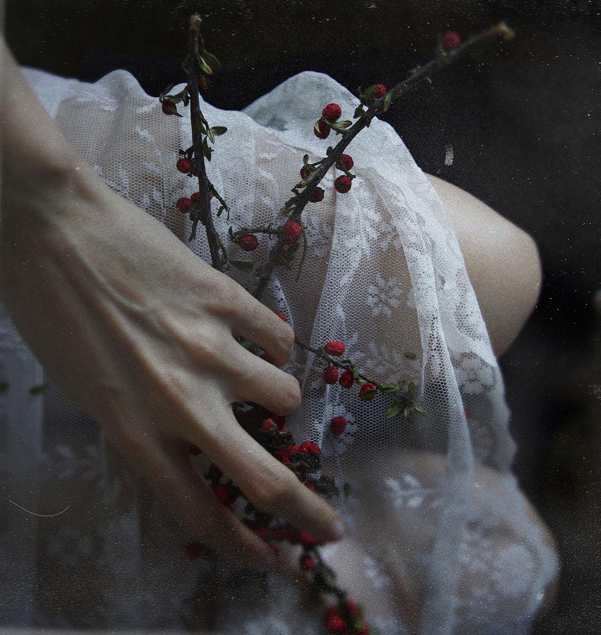 Laura Lech Photographer